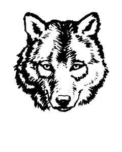 Tukes Valley Primary Logo - No Staff Photo