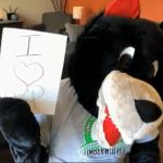 TVP Mascot Timmy the Timberwolf